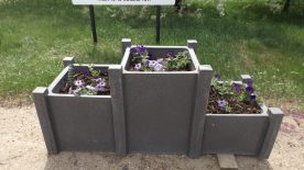 BIG Thank you to Bev Potter & Shirley Weinbender GULL LAKE Town Beautification  Mayor's Report Community