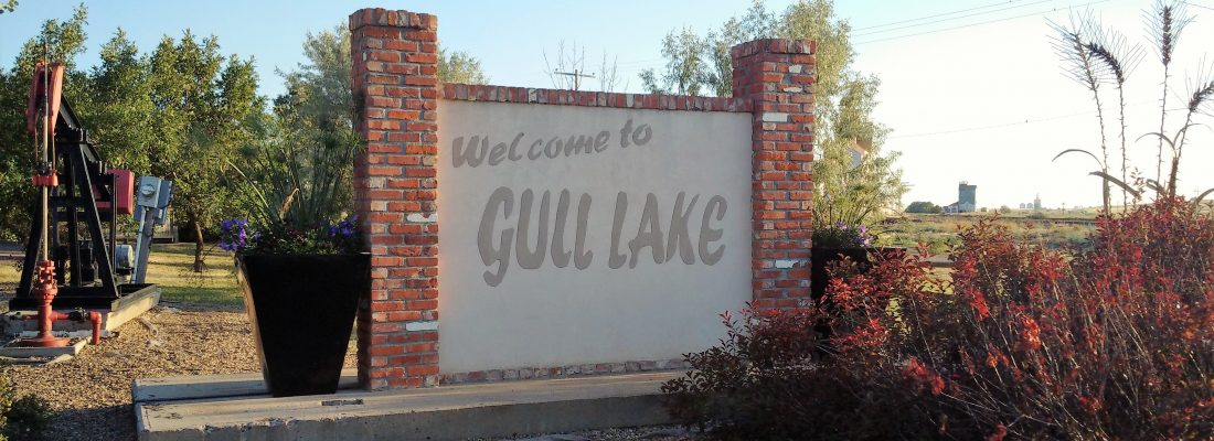 Economic Development in Gull Lake Economic Development GULL LAKE