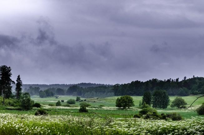 Monsunlandskap