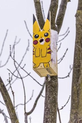 Pikachuholk