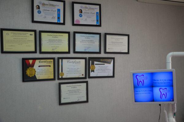 dt. gülsemin koçak diş hekimi gülsemin koçak klinik diş kliniği muayene sertifika