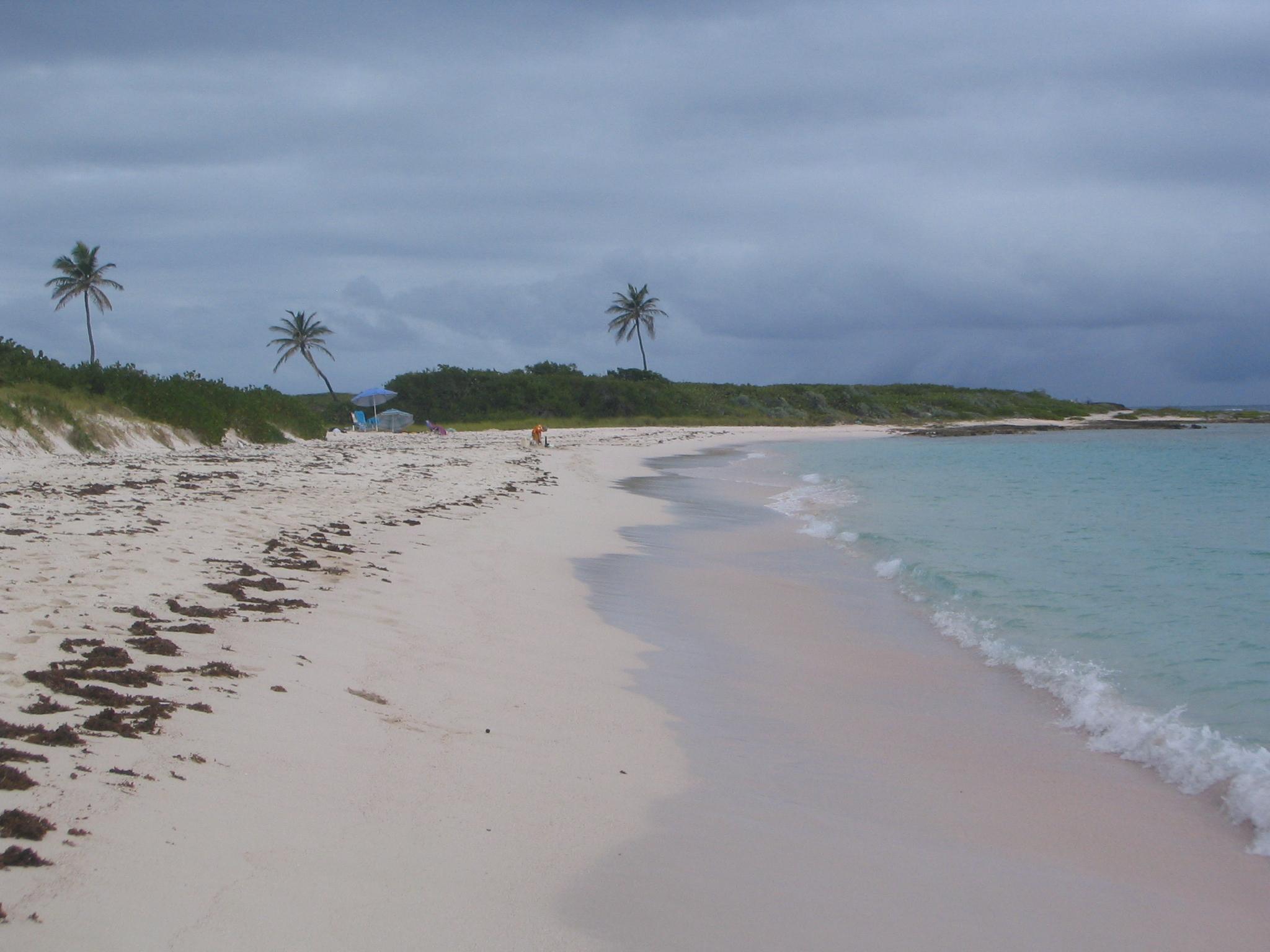 Solitude at Junk's Hole Beach