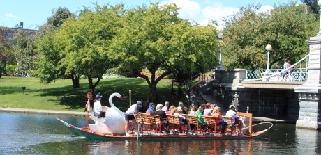 boston_swan_boat