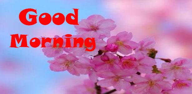 ingilizce günaydın mesajları yeni