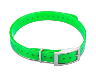 "Garmin 3/4"" Square Buckle Collar Strap - Green|www.gundogoutfitter.com"