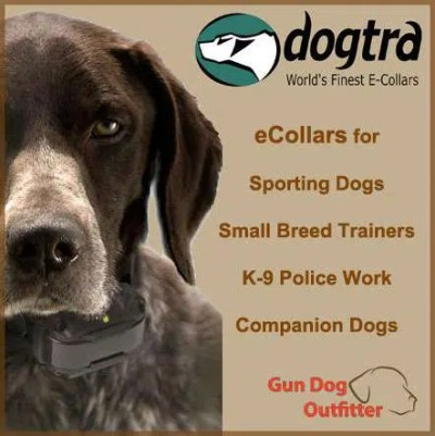 Dogtra Making every dog exceptional!