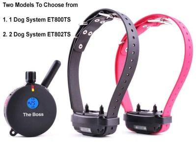 E Collar Technology Boss Training Collar