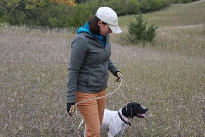 gundogoutfitter.com|gun dog outfitter|dog training|dog lead