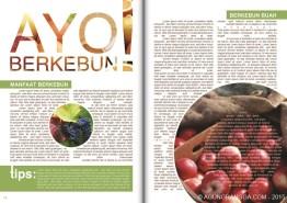 belajar membuat layout majalah di Adobe Indesign