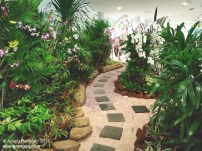 taman mini di bandara ngurah rai