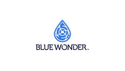 Blue Wonder Gun Care