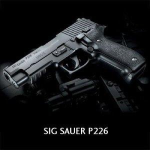 SIG226