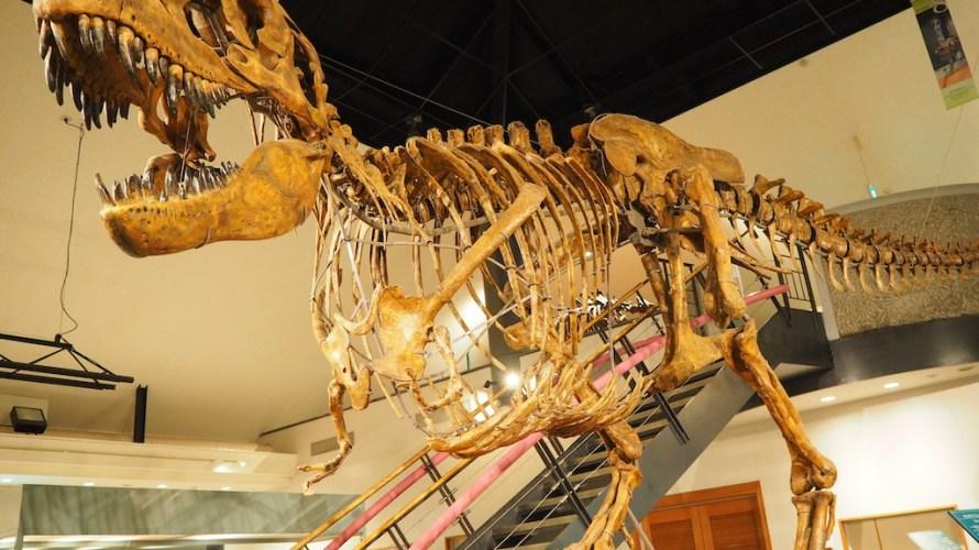 神流町恐竜センターは迫力のライブシアターが楽しめる関東の恐竜王国!【群馬】おすすめスポット