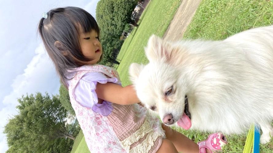 世界の名犬牧場は犬連れもそうでない人も楽しめる犬とのふれあいパーク!【群馬】おすすめスポット
