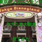 【東京ディズニーランド】うさたま大脱走を見て来た【イースターイベント】