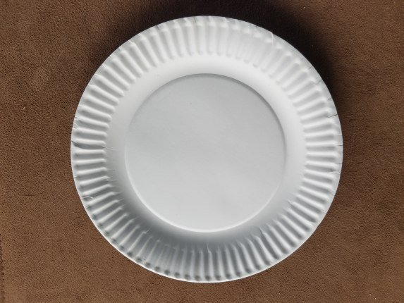 paper plate target