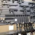 Gun Dealer's License