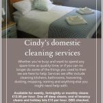 Cindy's Domestic Cleaning Services