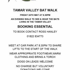 Tamar Valley Bat Walk