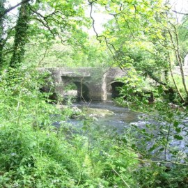 RIVER LYNHER and FROGWELL – Walk and Talk