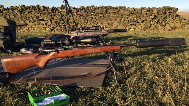 22 and 17 Hornet Fruit Juicing Action with the CZ 527s