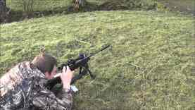 Rabbit Hunting 4