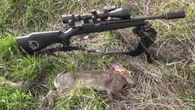 Rimfire Rabbits 22lr 118 yard HEAD SHOT! CZ 452