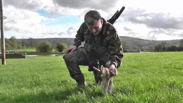 Spring CZ 455 17 HMR Rabbits to 170 Yards