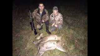 Sussex Doe Double – Evening Roe Deer Stalking