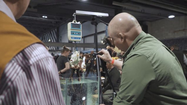 Trophy Evaluation At The Great British Shooting Show