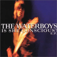 The Waterboys - Is she conscious EP
