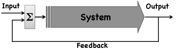 Closed Loop Feedback