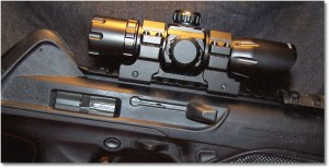 Sight Mounted On the Beretta CX4 Storm