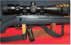 Ruger American Model 6913, .223 Remington w/ Center-Point 4-16x40 Scope.
