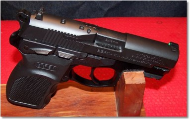 The Beauty of the Bersa Thunder9 UC Pro Has risen! Do I have a Hallelujah!