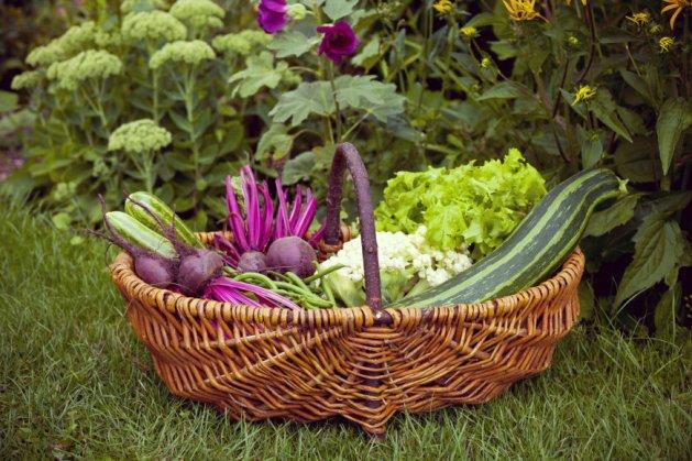 Vaisiai ir daržovės. Nuotrauka iš http://goo.gl/ilRcsN