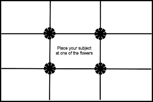 """Let the """"rule of thirds"""" improve your photography."""