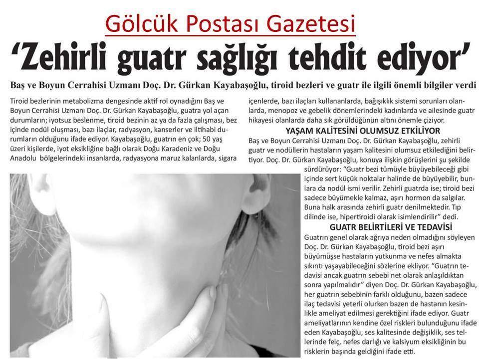 Gölcük Postası Gazetesi