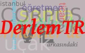 Hürriyet Gazetesinde Yıllara Göre Sözcük Kullanımı