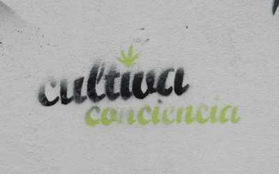 Can foreigners buy marijuana in Uruguay?