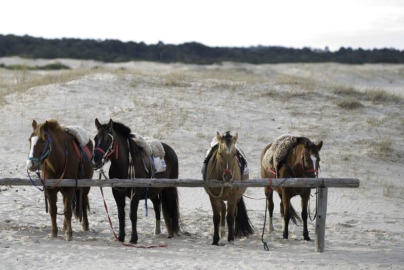 jose ignacio uruguay beach