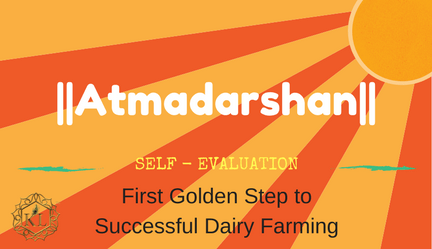 First Golden Step to Successful Dairy Farming