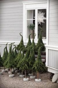 Tannenbäume aus verkehrten Zweige