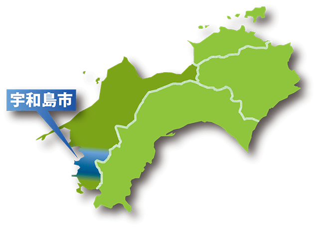 宇和島は魚の宝庫