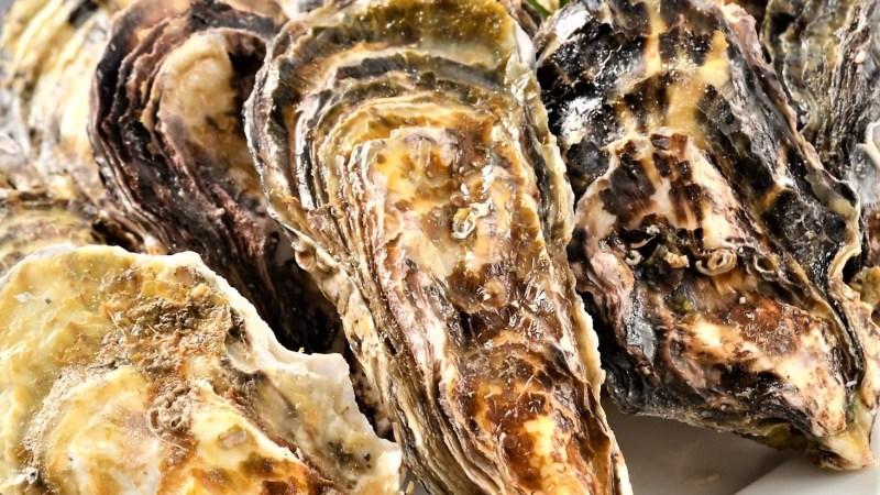 蒸し牡蠣のおいしい食べ方と効率の良い栄養摂取方法!