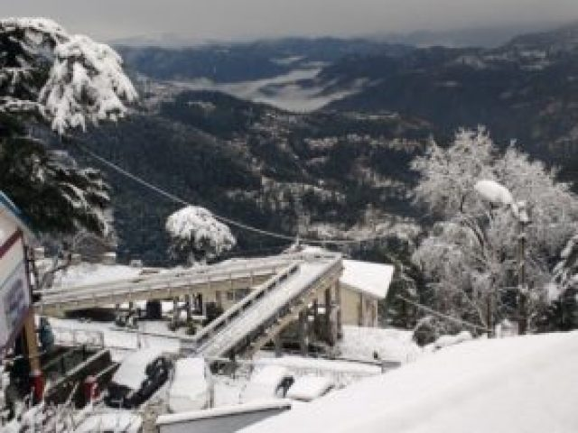 shimla-snowfall-new-year-eve