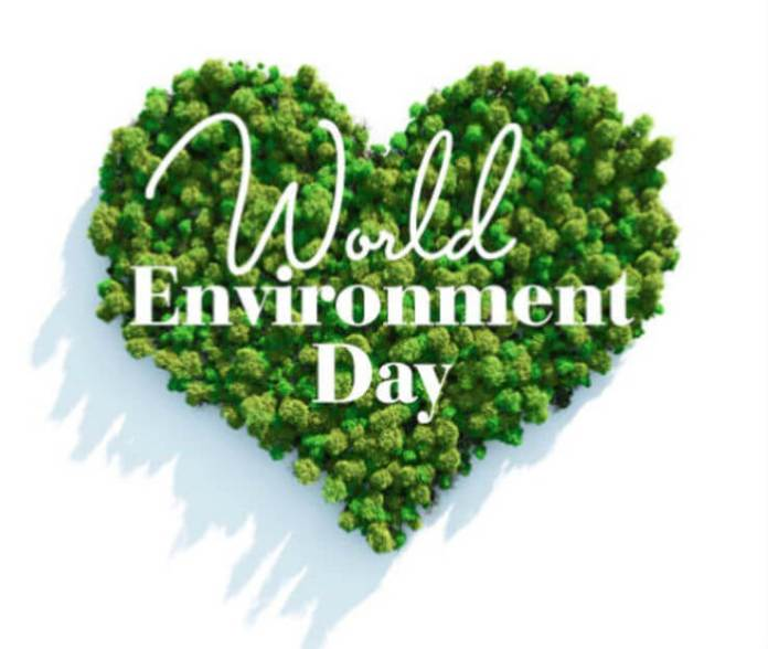 environment day images