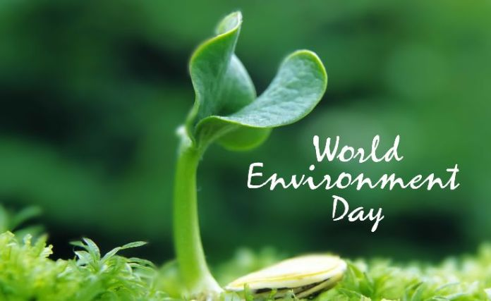 environment day poster