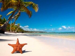 Туры в Доминикану на 9-11 ночей, отели 3-5*, все включено от 114 711 руб за ДВОИХ – сентябрь