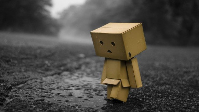 11829-sad-danbo-in-the-rain